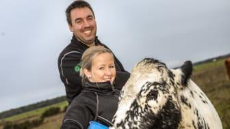 Lantbrukarparet Erik Levander och Maria Eriksson på Bols Gård i Havdhem på södra Gotland deltar i Smak av Gotlands projekt Fossilfritt kött.