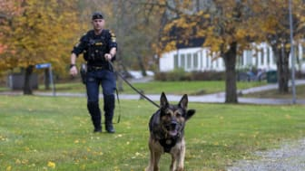 Årets polishund 2020