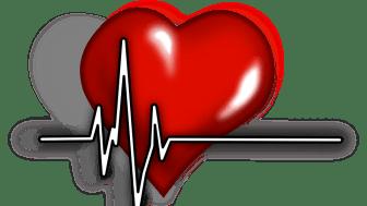 Den 9 mars delar 1,6 miljonerklubben ut stipendium för forskning inom kvinnors hjärthälsa.