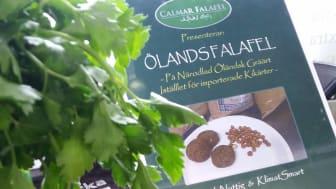 I Ölandsfalafel har de importerade kikärtorna bytts ut mot närodlade proteinrika gråärtor.