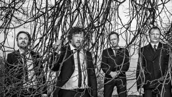 Weeping Willows klara för Dalhalla i september