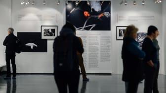Utställningen In the Footsteps of The Sacrifice hyllar Andreij Tarkovskij och gotlänningarna som gjorde filmen Offret möjlig.