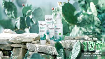 Cactus Hydrating Facial Care