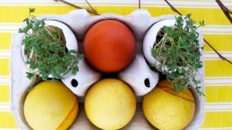 50 miljoner ägg i påsk