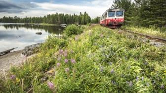 Inlandsbanan erbjuder tågresor sommar och vinter. Vi har flera spännande paket för dig som vill ha det enkelt och bekvämt.