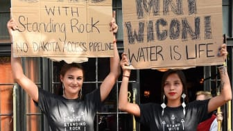 Not even noble causes like the Dakota Access Pipeline are safe from idea theft. Image source: Shailene Woodley