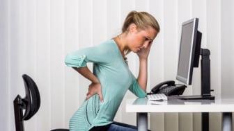 Bei Rückenschmerzen bietet FPZ wirksame Präventions - und Therapieprogramme.
