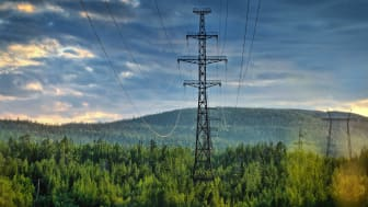 Biokraft – Balanskraft, hur då, hur dyrt?