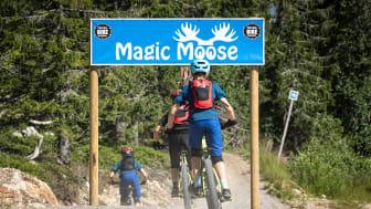 Trysil Magic Moose