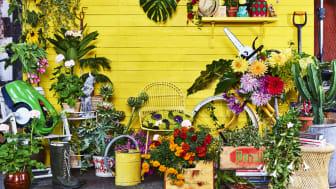 Inspiration och shopping på Nordens största trädgårdsmässa