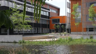 Dammen bakom Videum Science Park