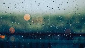 Kurze, heftige Regengüssse verursachen besonders viele Schäden. Foto: Gabriele Diwald/unsplash.com