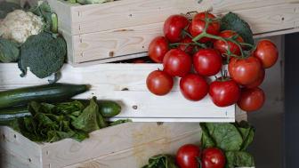 Svenska nyskördade grönsaker