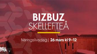Bizbuz blickar framåt – Skellefteås position på en förändrad spelplan