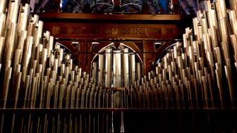 Bakom orgeln