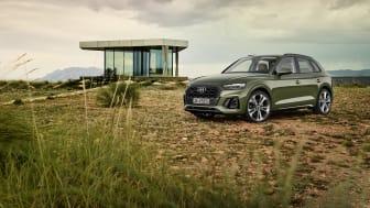 Audi Q5 2020 (Distriktgrøn)