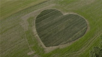Avec son cœur de blé Harmony, LU témoigne de son engagement fort pour une agriculture durable et locale