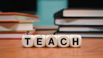 Am 16. August 2021 starten 13 Studierende das dreisemestrige Weiterbildungsprogramm für Lehrkräfte im Fach Mathematik am Wildau Institute of Technology. Bild: Pixabay