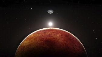 COMMENT: Mars: why contamination and planetary protection are key to any search for life