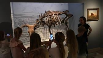 Lejre Museum, Frederikssund Museum, Færgegården og her Roskilde Museum er under normale omstændigheder populære udflugtsmål for skoleklasser. ROMU havde i løbet af 2019 besøg af 581 skoleklasser på tværs af besøgssteder. Foto: ROMU