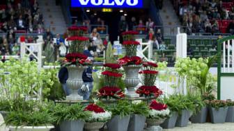 Blommor i Scandinavium