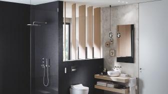 Till Sveriges modernaste Ekohus har man bland annat valt Geberits snålspolande duschtoalett AquaClean. Här tillsammans med tvättstället Variform i en liknande miljö.