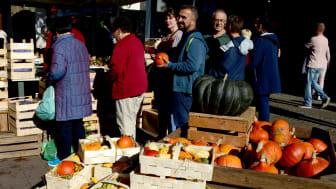 Bunte Produktvielfalt beim Bauernmarkt vom 5.-7. Oktober in der Kieler Innenstadt