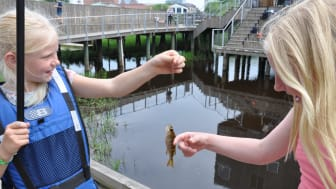 Nya projekt ska få fler att fiska och vandra i Vattenriket