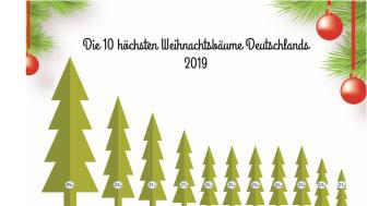 Die 11 höchsten Weihnachtsbäume Deutschlands 2019