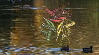 Det SAM-klyvande enzymet Svi3-3, som kommer från en bakteriofag i Svandammen.