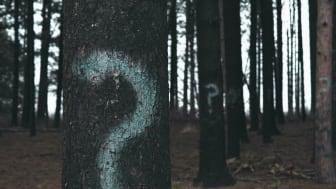 Träd med frågetecken