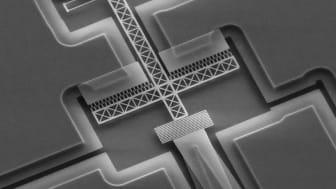 Så här liten är tekniken. Den mäter cirka 100 mikrometer och betraktas bäst under mikroskop.