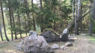 Människorna som begravdes i Ansgarve-graven hade en annan demografisk historia jämfört med samtida jägare-samlare. Foto: Magdalena Fraser