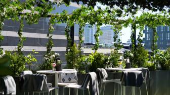 Gröna konceptet Green Hustle av Absolut finner du på Clarion Hotel Sign's takbar Rooftop Garden Bar!
