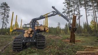 Cranab FC12 mounted on a Eco Log machine