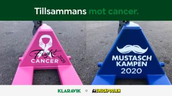 Dags att lyfta välgörenhetsfokuset! Under oktober-november finns chansen att bidra till cancerforskningen genom auktioner på klaravik.se.
