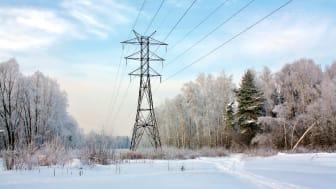 Årets første kuldeperiode har gitt spotprisen et hopp.