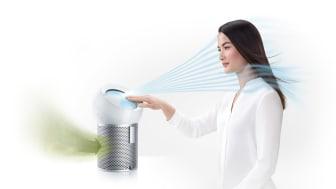 Sechs Gründe, warum Sie in diesem Sommer den Luftreiniger Dyson Pure Cool Me brauchen