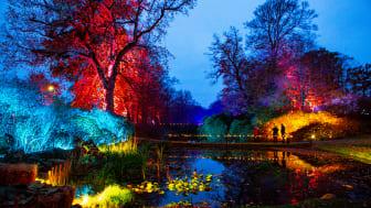 Höstljus på Sofiero pågår till 15 november. Foto: Mattias Berglund