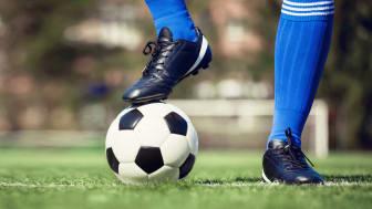 Genom Kiwas kontroller följer Sveriges elitplaner FIFA:s standarder