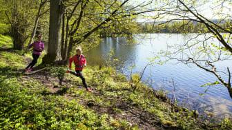 Billingen Hike & Trail genomförs för första gången 11-13 september på Billingen och i vackra Vallebygden. Foto: Roger Borgelid/Turistrådet Västsverige