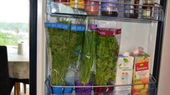 Sæt urterne i køleskabet