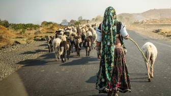 Vi är också Indier heter den rapport som Open Doors lanserar den 28 mars.
