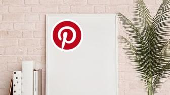 Pinterest - Das Social Network