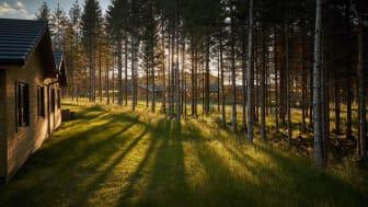Center Parcs Longford Forest July 2019 13
