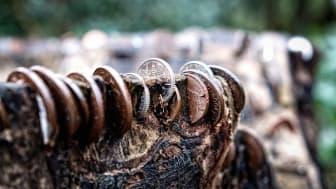Börsentag kompakt ONLINE - nachhaltiges Investieren