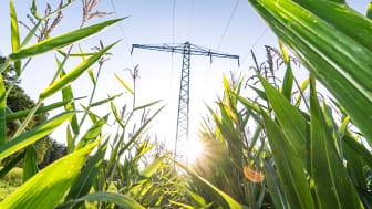 Ny rapport: Miljöeffekter av elnät och energilagring – en förstudie av nyckelkomponenter i ett framtida fossilfritt energisystem.