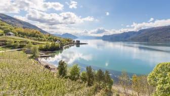 Bærekraftig fjordcruise på Sørfjorden starter opp 19. juni 2020. Foto: Haara