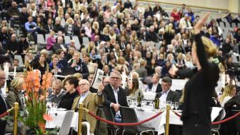 Budning under Swedish Select Horse Sales Auktion