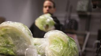 Matvarugrossisten Menigo är en av Sveriges största B2B e-handlare.